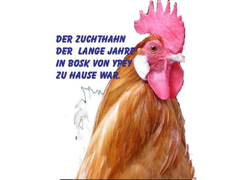 Hahn-Ypey